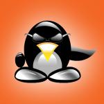 bug linux
