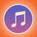 plug-in musicisti wordpress